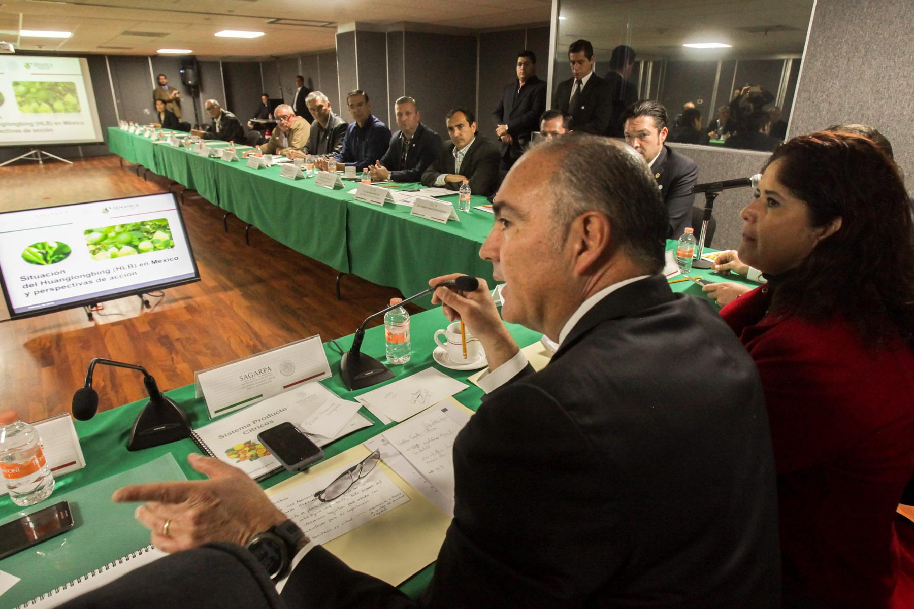 La Secretaría de Agricultura, Ganadería, Desarrollo Rural, Pesca y Alimentación (SAGARPA) impulsará un proyecto para la construcción de una planta de irradiación de cítricos para exportación, anunció su titular José Calzada Rovirosa.