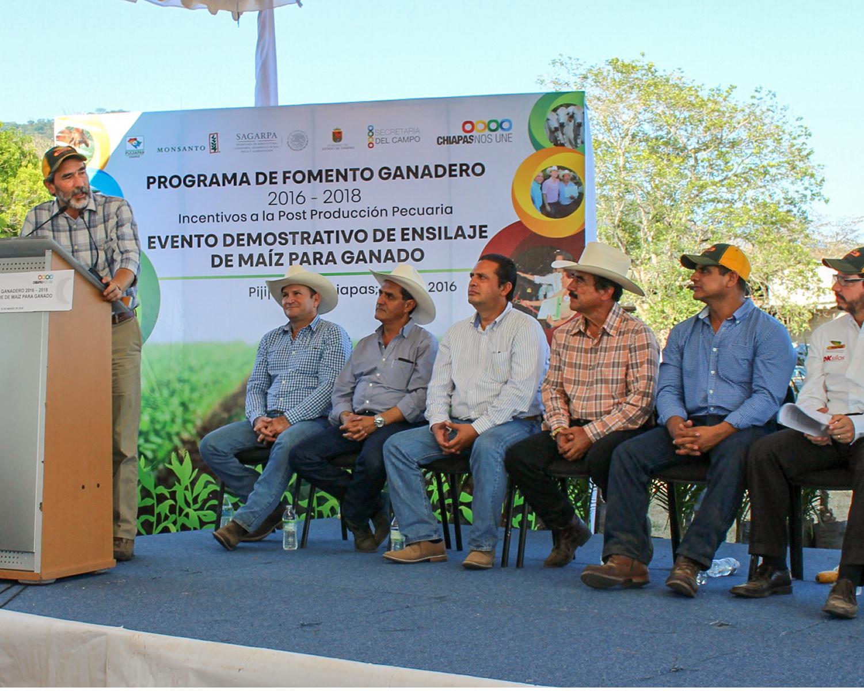 Se habilitarán 10 mil hectáreas para siembra de maíz de uso pecuario en Chiapas.