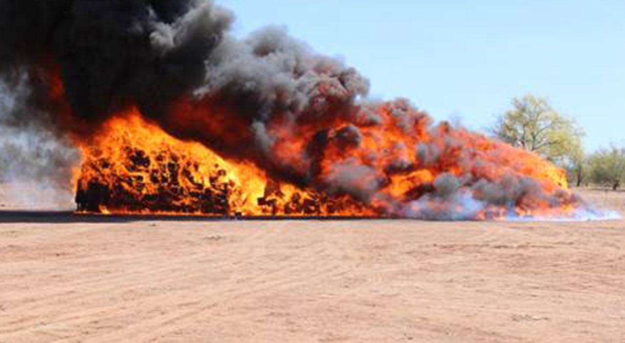 Destruye PGR más de 24 toneladas de mariguana y otros enervantes en Sonora
