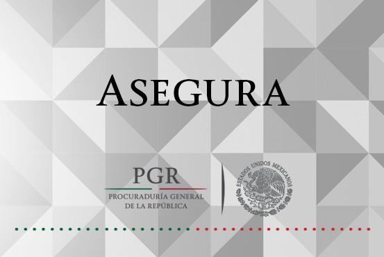 Asegura PGR piezas de material apócrifo en Guanajuato. Comunicado 436/16
