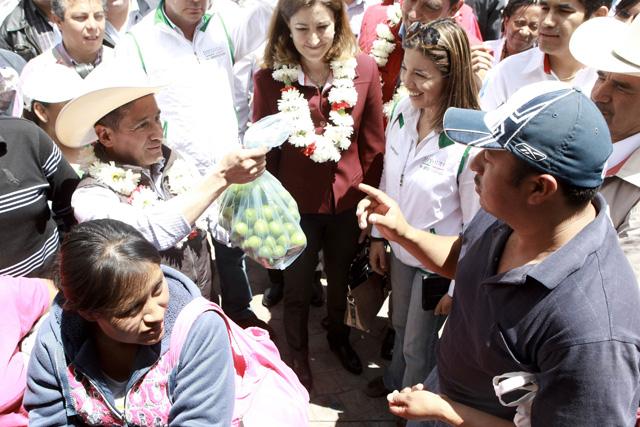Diconsa ofrece limón en sus seis mil establecimientos rurales