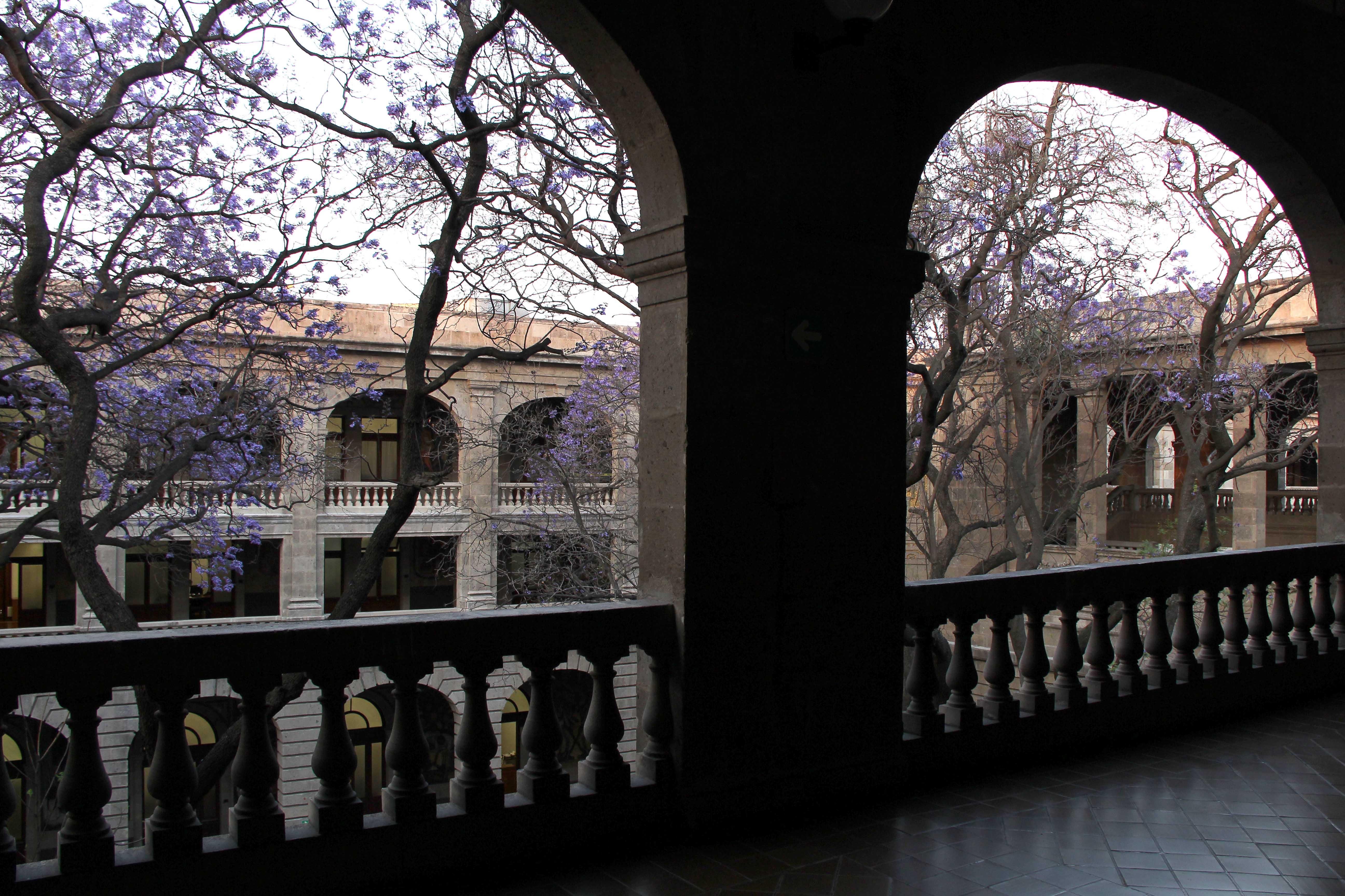 La convocatoria y pre-registro puede consultarse en la página www.conalep.edu.mx.