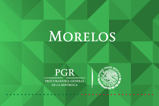 PGR inicia carpeta de investigación por el aseguramiento de marihuana