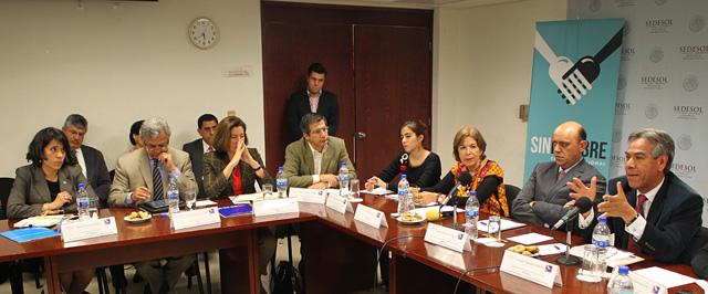 Instala Sedesol el Grupo de Trabajo de Cooperación Internacional en el marco de la Cruzada Nacional Contra el Hambre con la participación de la ONU y la FAO