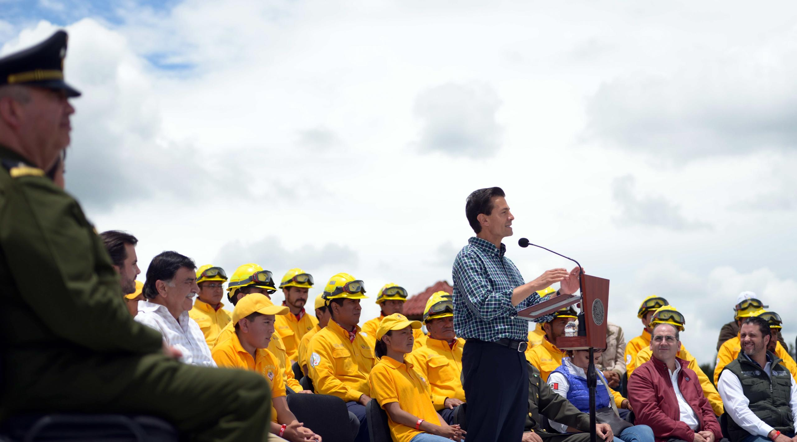 """""""We have met nearly 60 percent of the target so far, through the reforestation of nearly 600,000 hectares"""". EPN"""