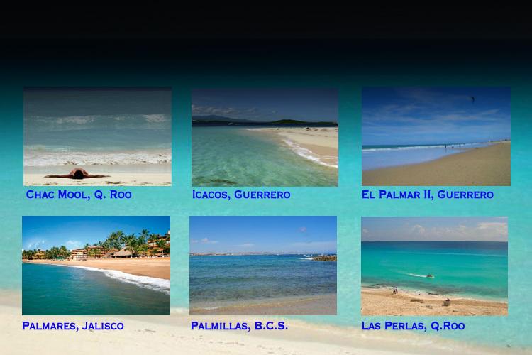 Las seis playas con certificación Blue Flag: Chac Mool, Q.Roo; Icacos, Guerrero; El Palmar II, Guerrero; Palmares, Jalisco; Palmillas, B.C.S.; Las Perlas, Q. Roo.