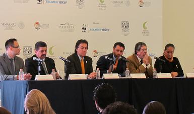 La CONANP ejecutó acciones de conservación y restauración en 53.94 hectáreas afectadas.