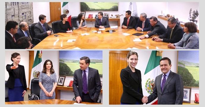 Cynthia María Villarreal Muraira es designada Coordinadora General del PRONAFIM