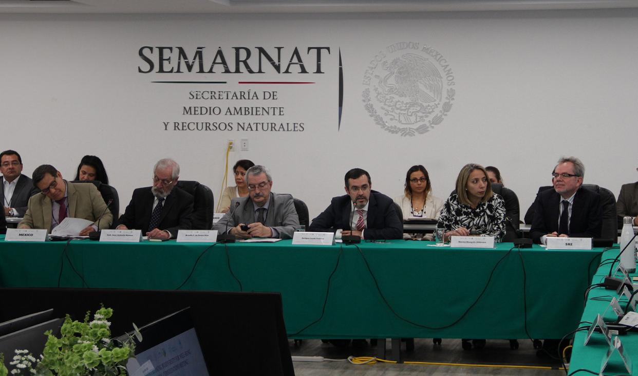 Reuniones preparatorias rumbo a la COP13 en México.