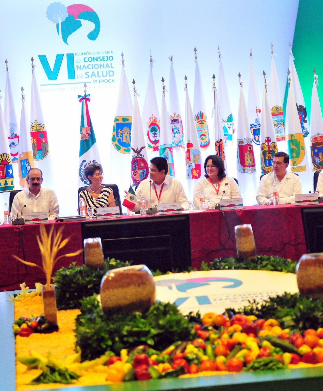VI Reunión Ordinaria del Consejo Nacional de Salud