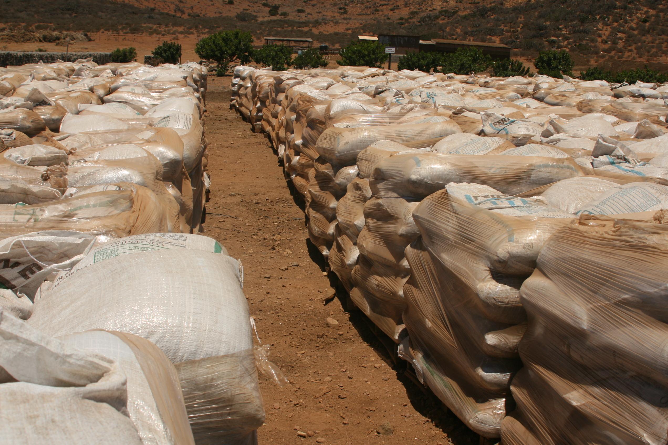La Cofepris anuncia el  aseguramiento de 540 toneladas de nutrientes vegetales