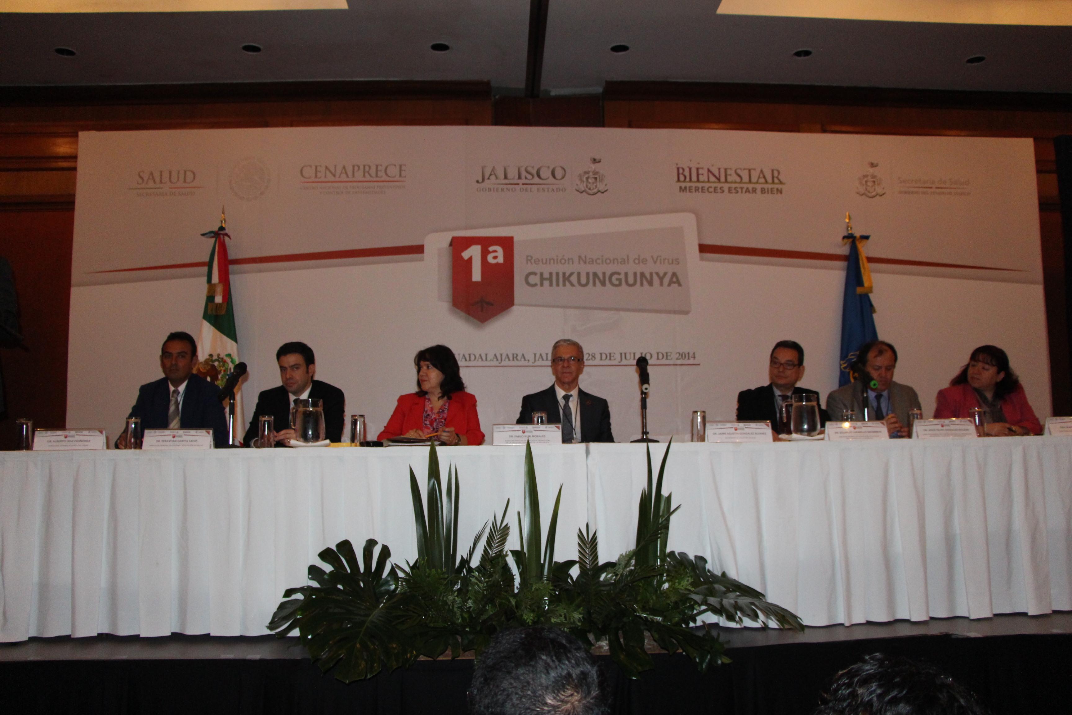 Reunion Nacional de Virus Chikungunya