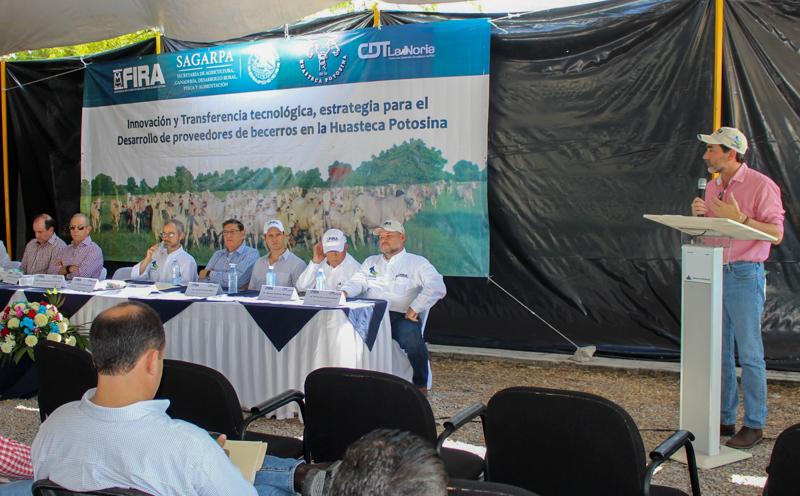 El subsector cárnico ocupa el tercer lugar en el valor de las exportaciones agropecuarias mexicanas.