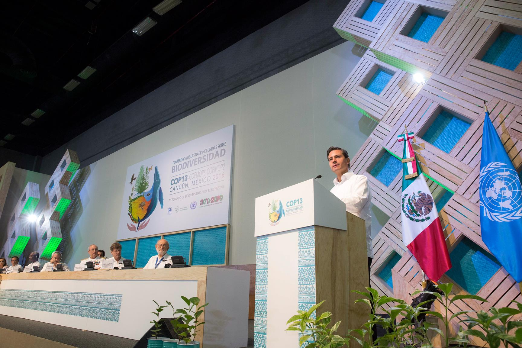 The president inaugurated the13th Conference of the Parties to the United Nations Convention on Biological Diversity (COP13).