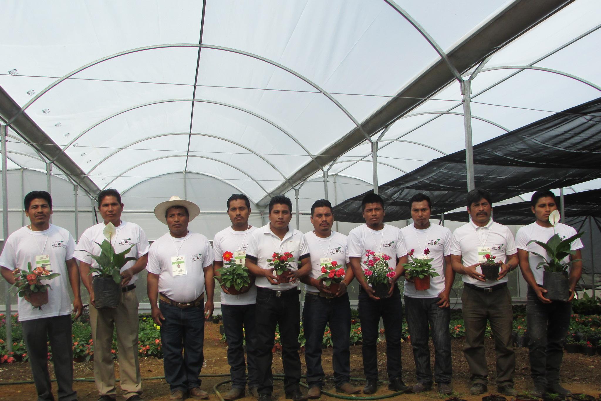 Para evitar la extracción ilegal de abono se implementa la estrategia de manejo alternativo para la tierra de hoja.