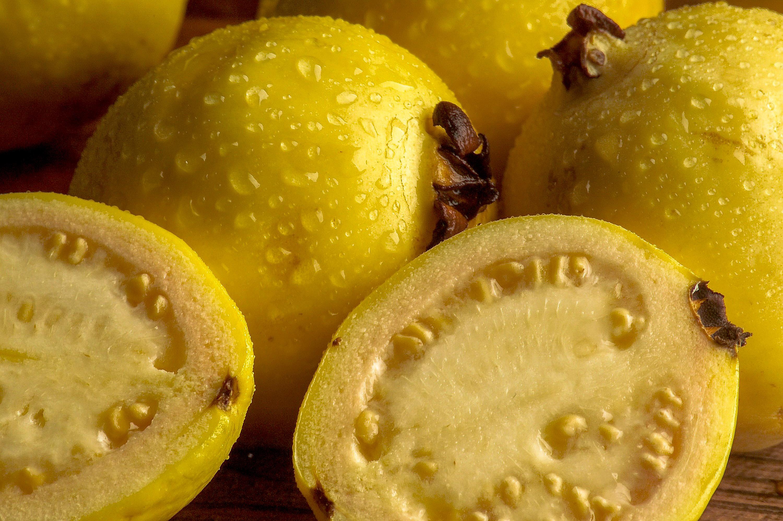 En términos anuales, la producción de este fruto se incrementó 3.8 por ciento, al pasar de 216 mil 649 toneladas en 2015 a más de 224 mil reportadas  en los primeros 10 meses de este año.