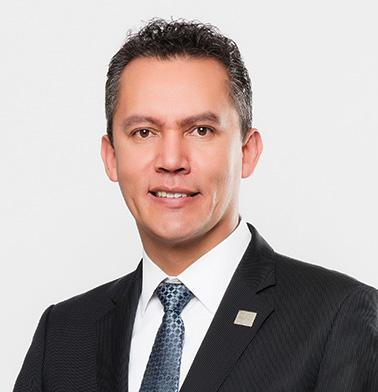 Comisionado Ing. Gaspar Franco Hernández