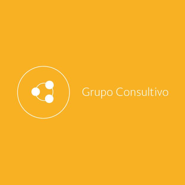El Grupo Consultivo integrado por representantes del Gobierno Federal, sector privado y academia.